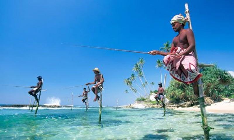 SRI LANKA - Tours e soggiorni mare - Estensioni MALDIVE - Frenesia ...